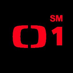 ct1sm