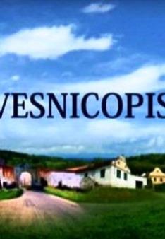 Vesnicopis (Vesnice Plzně)
