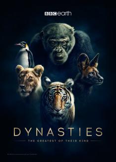 Dynastie (Levy)