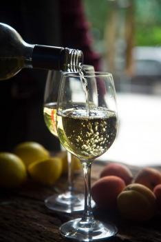 Krajinou vína (3)