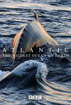 Atlantský oceán (Z pozemského ráje do pekla)