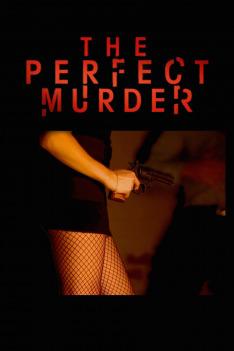 Dokonalá vražda IV (Výstřel ve tmě)