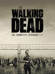 Walking Dead VIII (11, 12)