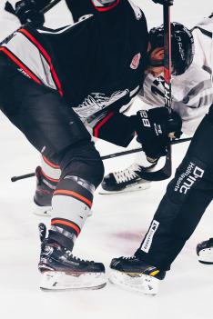 Hokej: Česko - Lotyšsko