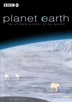 Zázračná planeta: Velké hody ledního medvěda